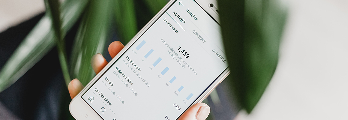 Mobile Mockup with Data
